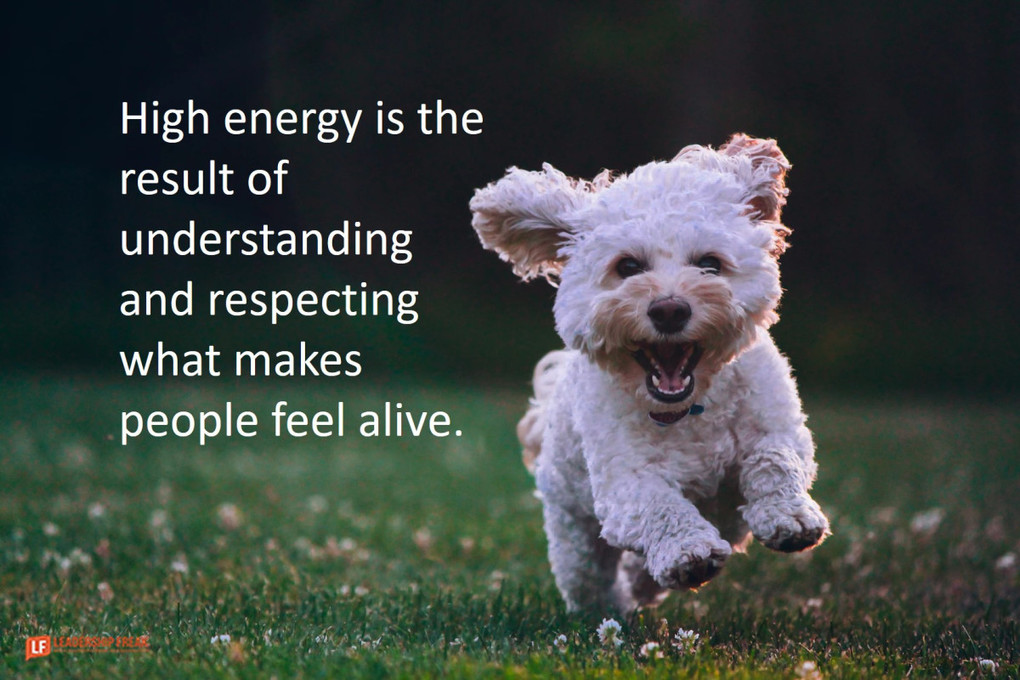 4 Practices Guaranteed to Energize Tired Teams