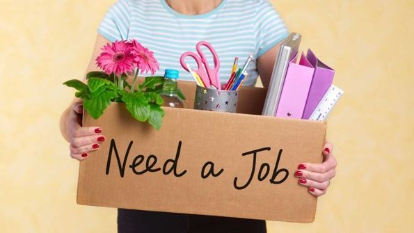 Advice for returning to work after being fired or taking a career break