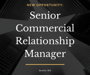 Senior Commercial Relationship Manager