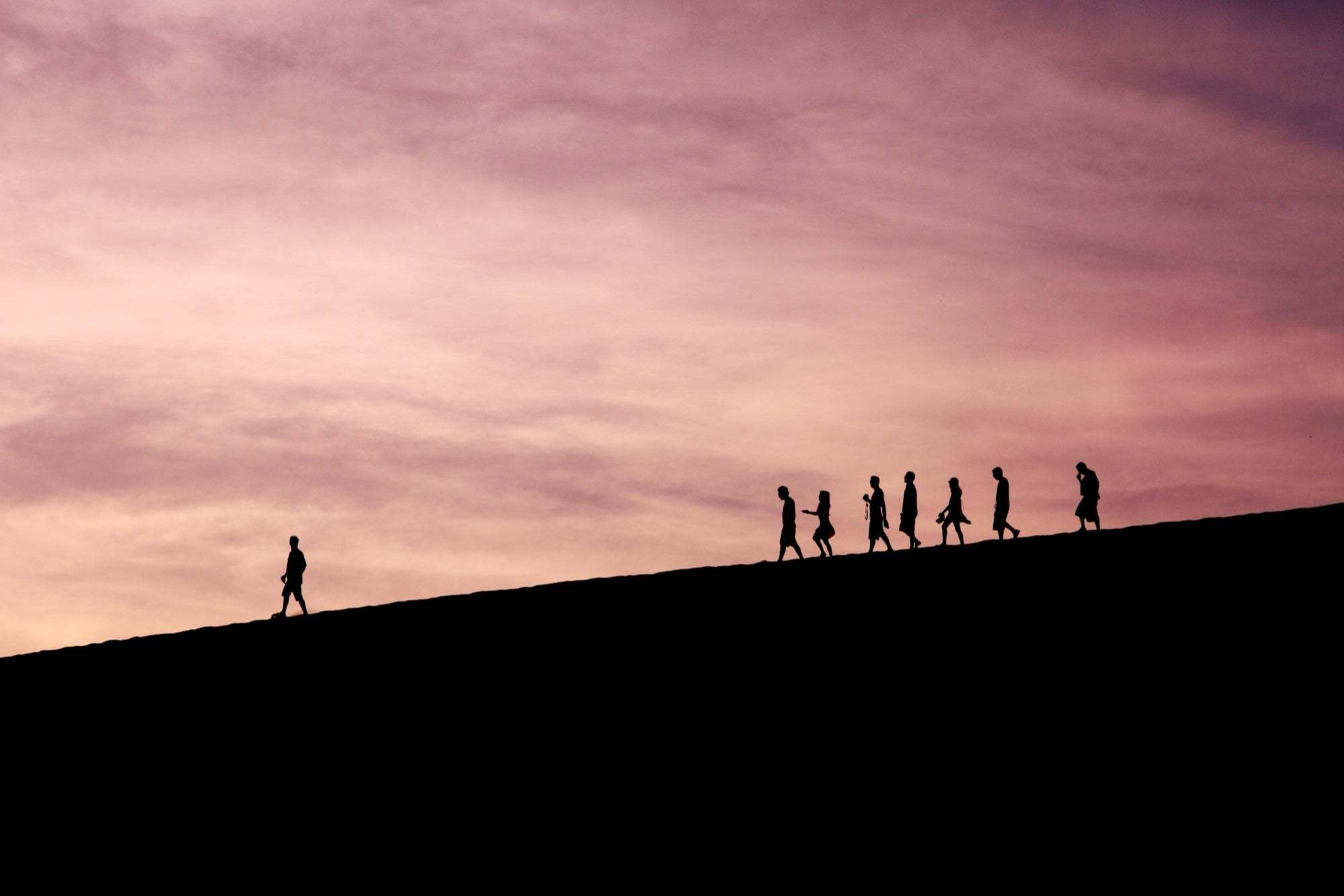 Are You the Leader Your Work Team Needs?